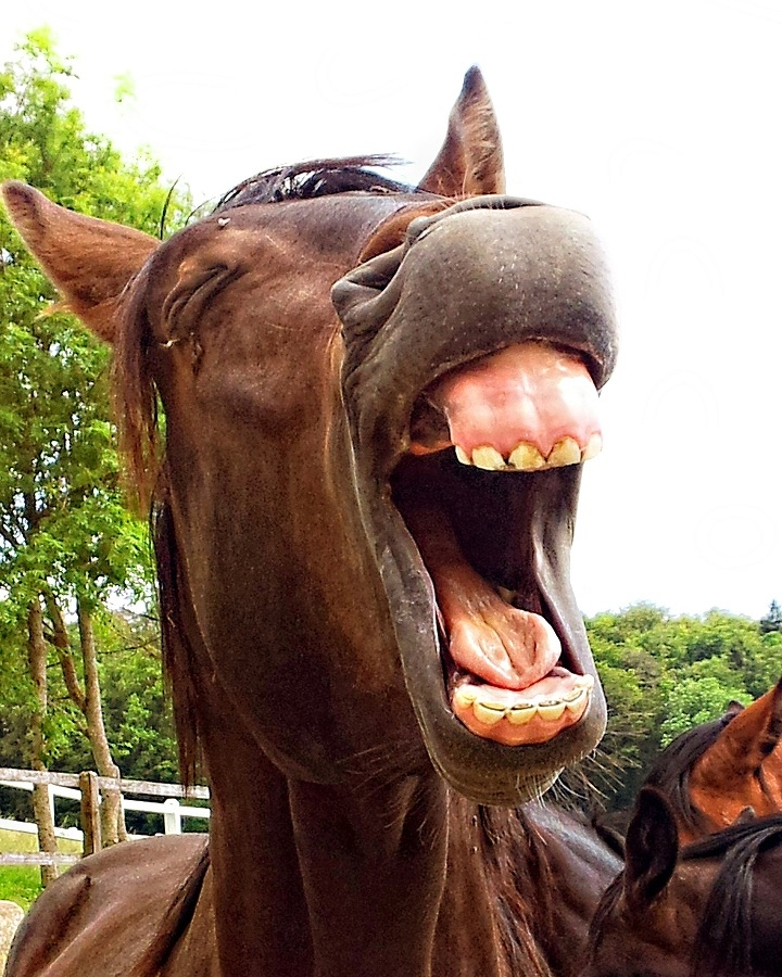 Lache dich glücklich