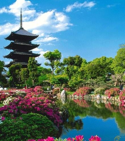 画像:Japan