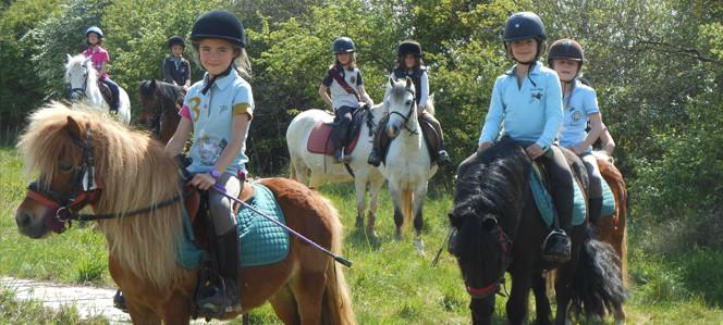 Equitation sur poney à proximité d'Auxerre