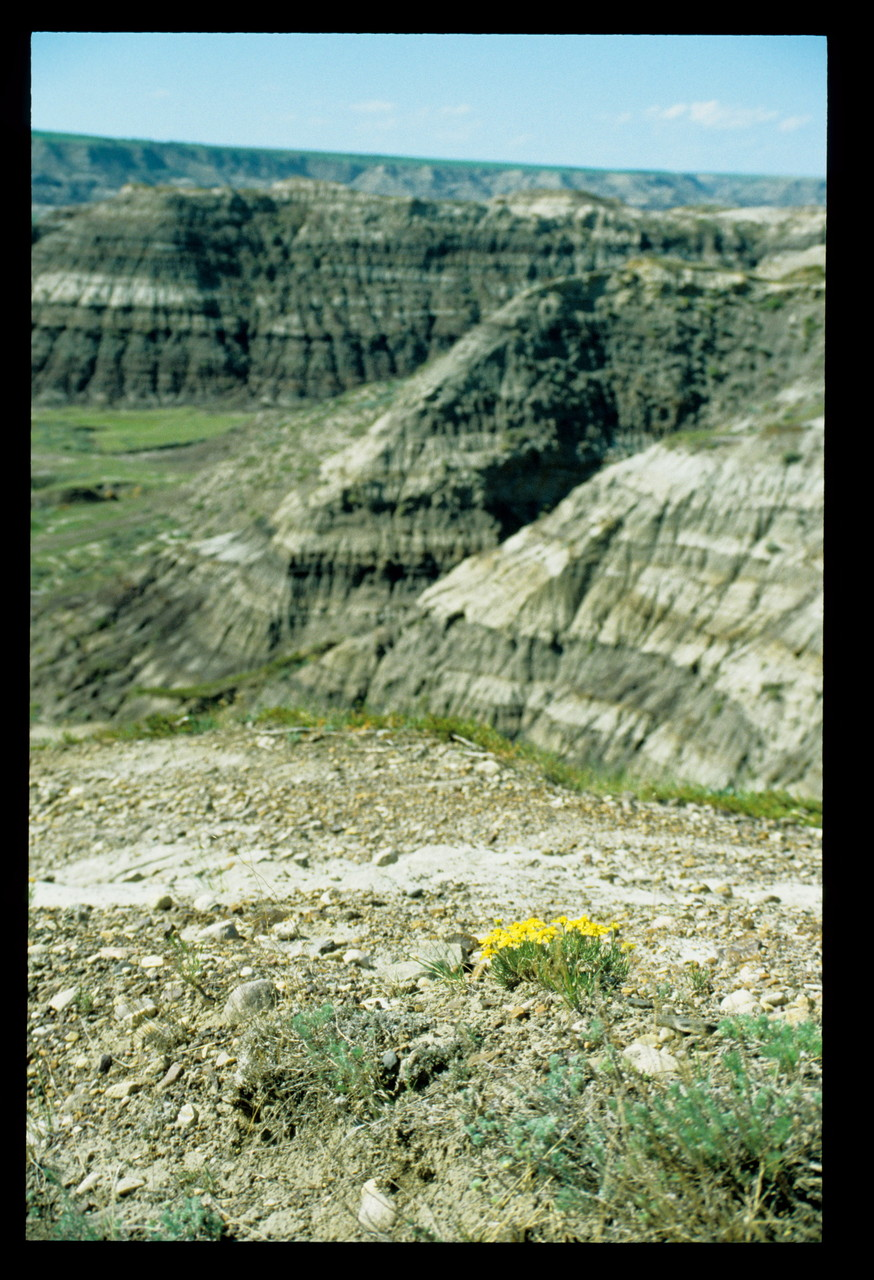 Midland Provincial Park IV