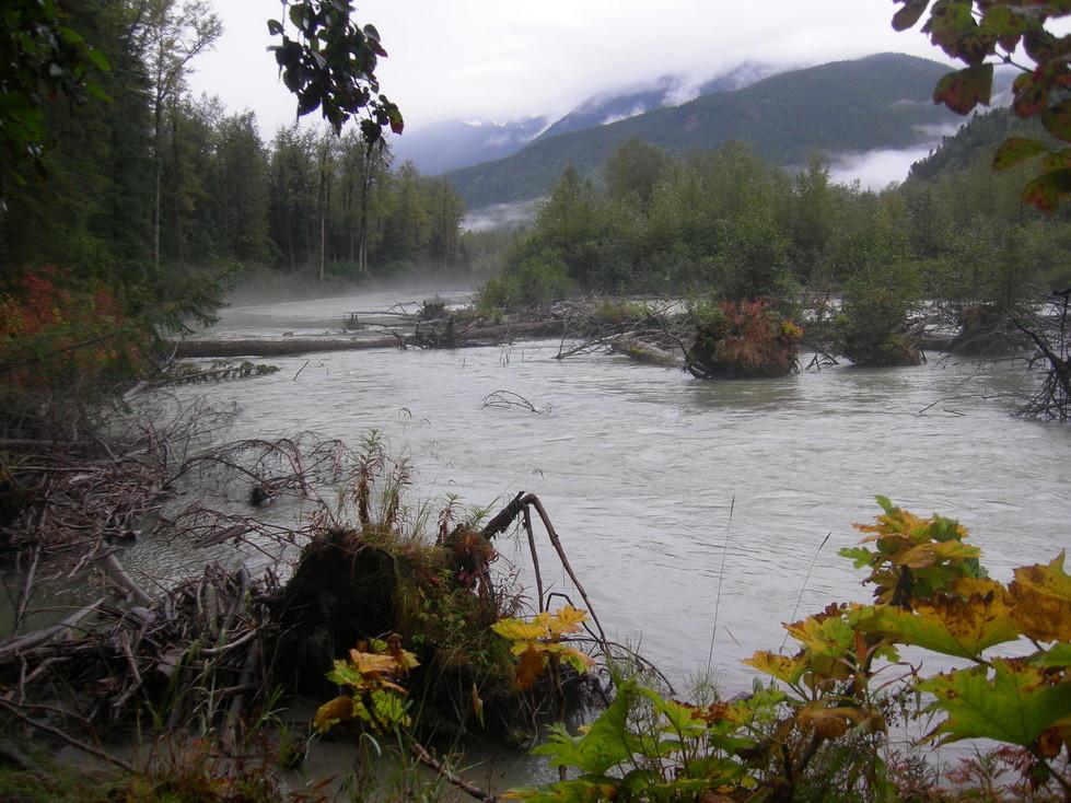 Der Fluss bleibt immer in der Nähe