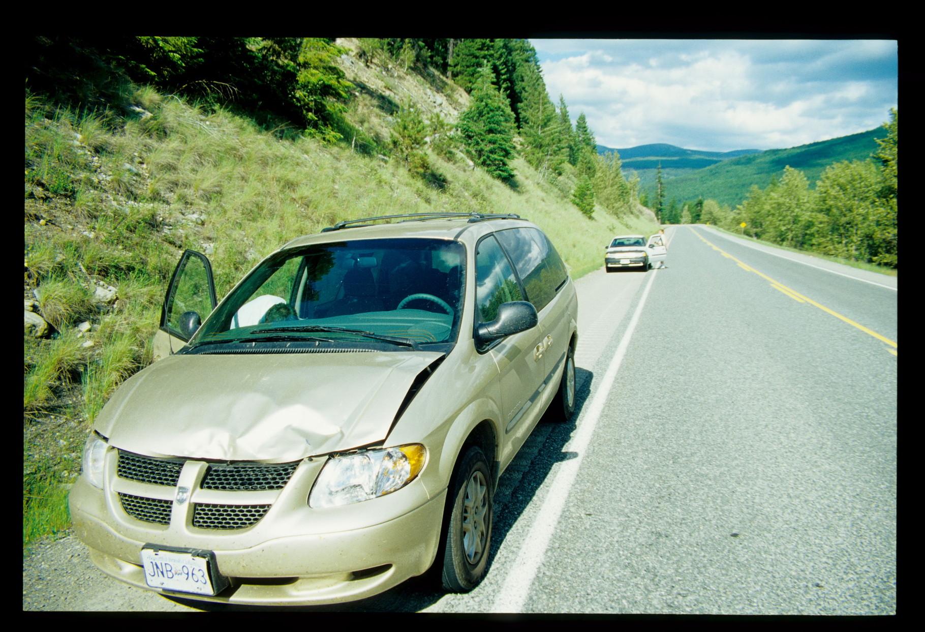 Und da ist uns ein Deer vor das Auto gesprungen. Keine Chance bei nur 80 km/h.