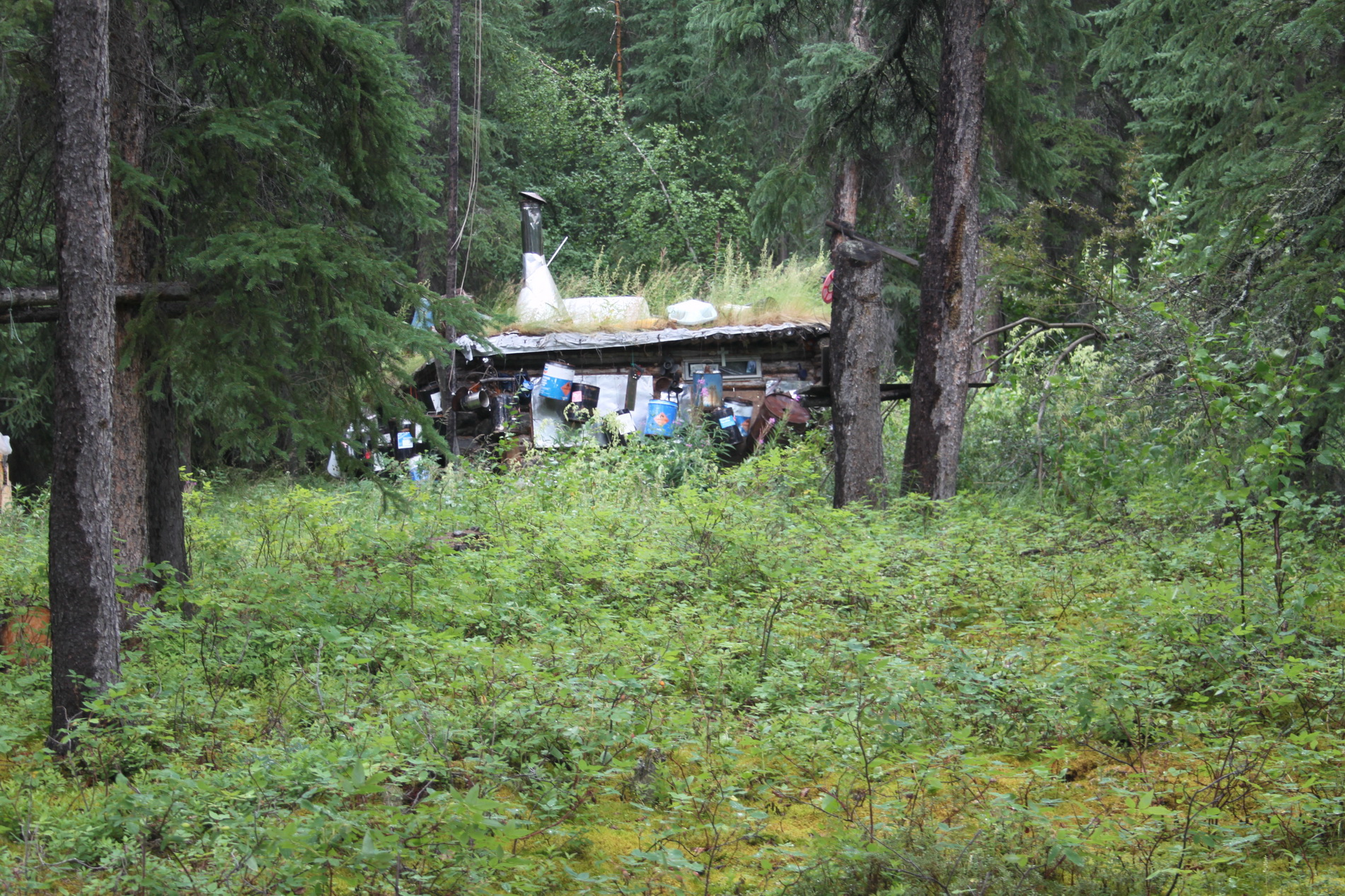 Unterwegs im Gebüsch steht diese leer Hütte.