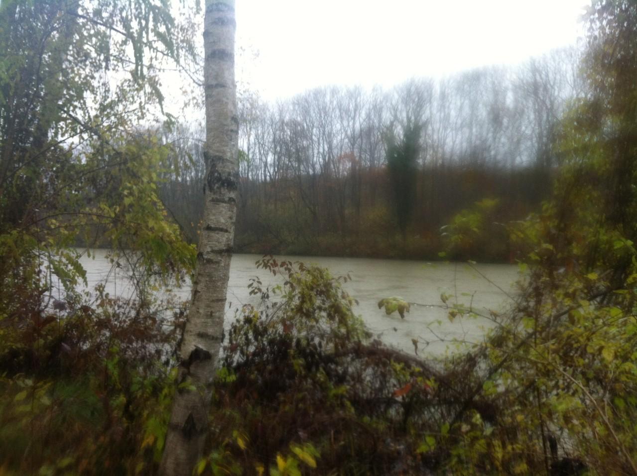 einen kleinen Bildlichen Einblick in die verregnete 10km Strecke in Leipheim.  - Fotos K.K.