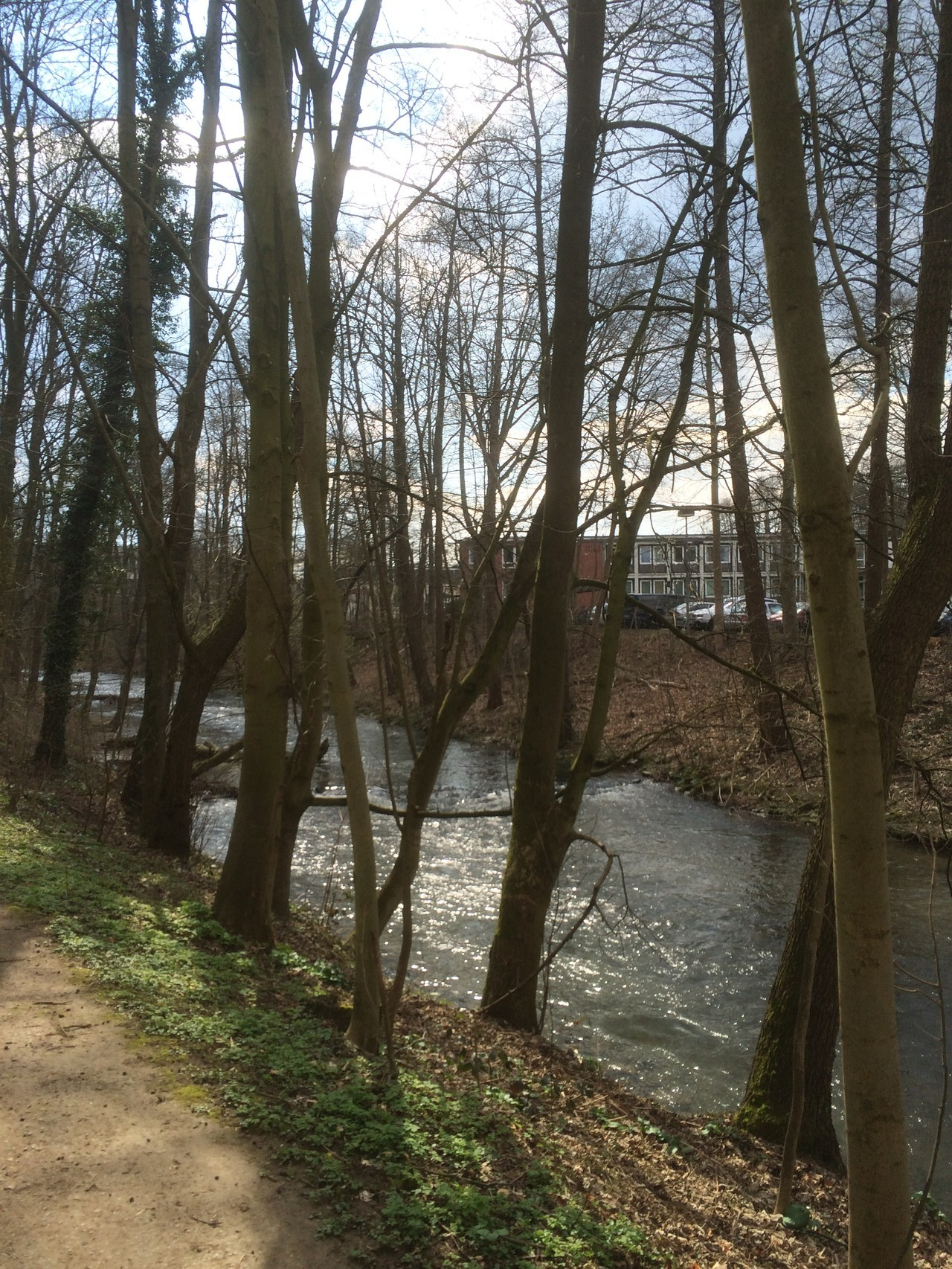 Geführte Tageswanderung in Leverkusen von Frank Over/Ostersonntag 05.04.2015  (Fotograf: K.Kra.)