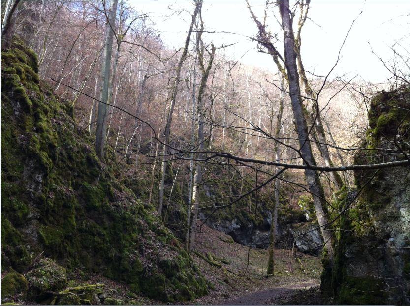 Fotograf K.K     (wandern im schönen UNESCO Biosphärengebiet Schwäbische Alb)