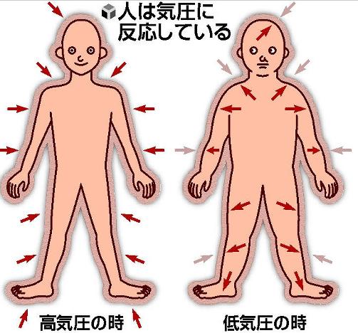 気圧が下がると、空気の体にかかる圧力が弱くなります。そうすると関節がゆるみやすくなります。