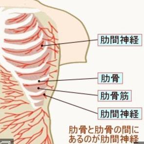 肋間神経領域に痛みがでます