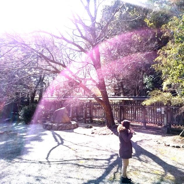 ヒーラー&サウンドセラピスト  四国徳島県在住