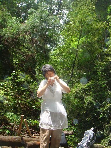 2011年 神山 神通の滝