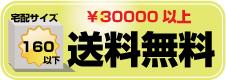 Tシャツプリント30000円以上送料無料