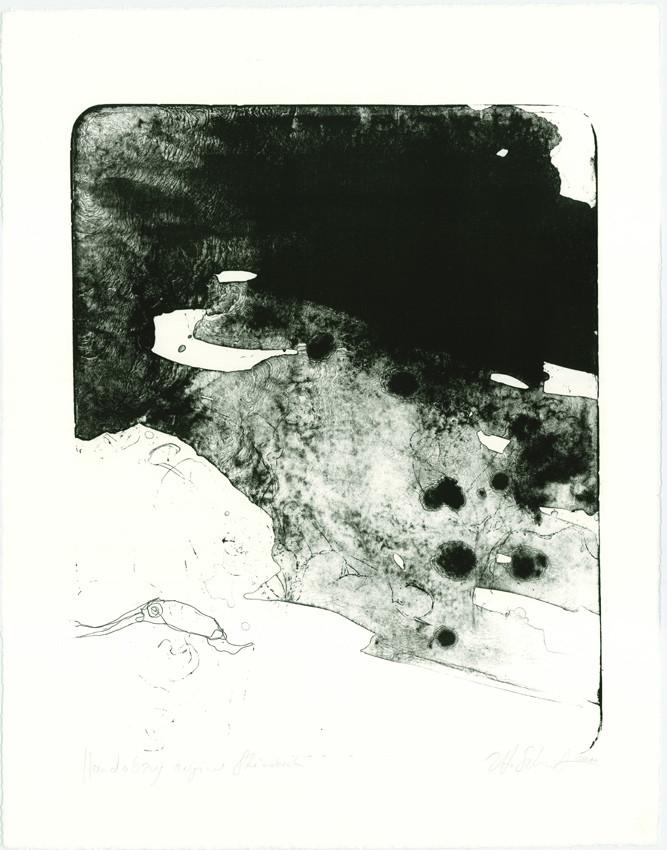 """""""herabsinkendes""""  65x50cm  2011"""
