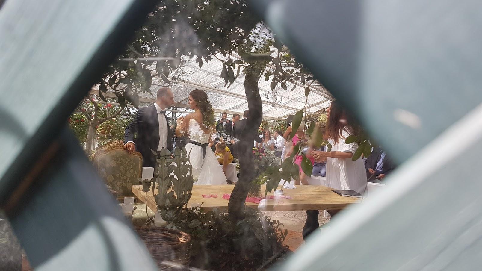 Wedding ...