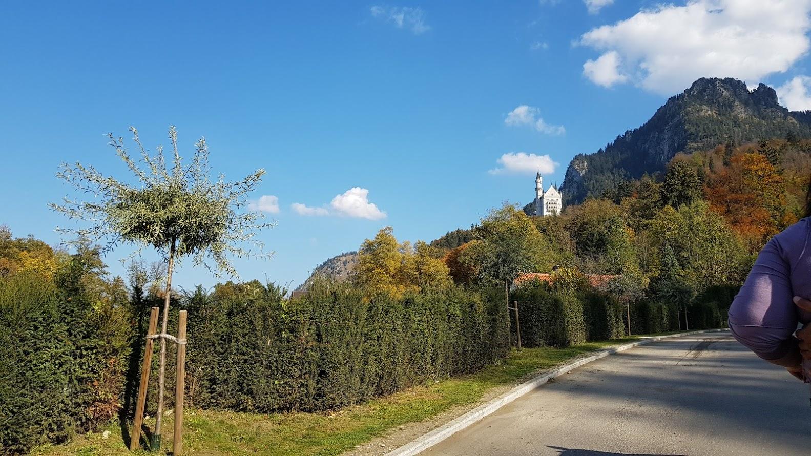 Das Schloss Neuschwanstein - eine herrliche Kulisse für die Hochzeitsfotos ...