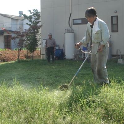 8月7日 芝生が長くなりすぎたので草刈り機で芝生を刈りました。