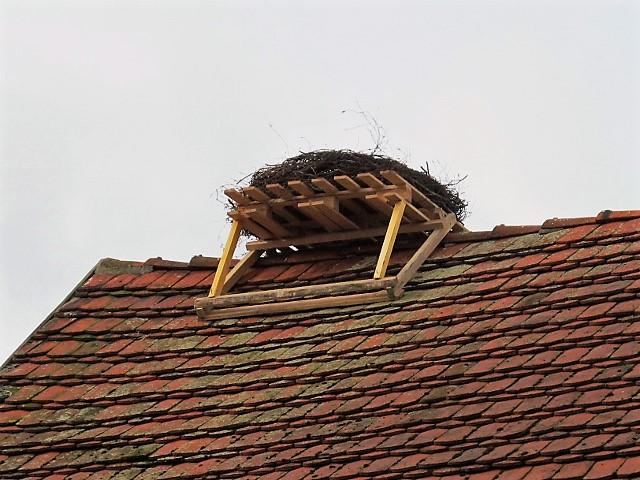 Ein komplett neues Nest erwartet die Rückkehrer