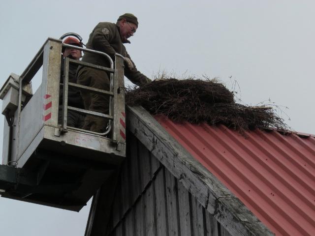 Auf der Buschvasenunterlage wird dann der vorbereitete Kranz befestigt
