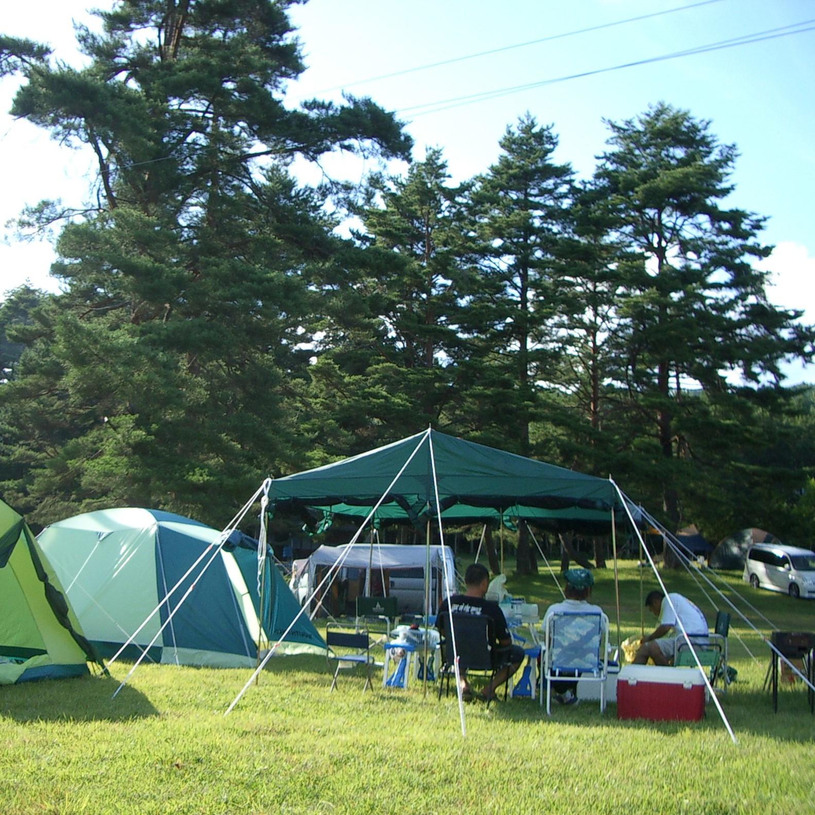 キャンプサイトはフリー区画