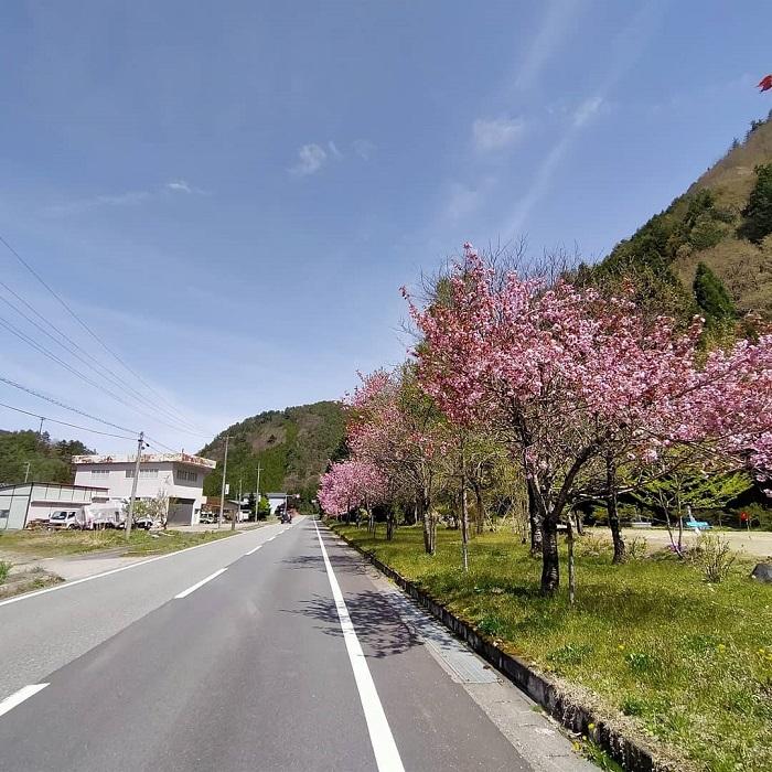 道の駅ひだ朝日村横、国道361号線