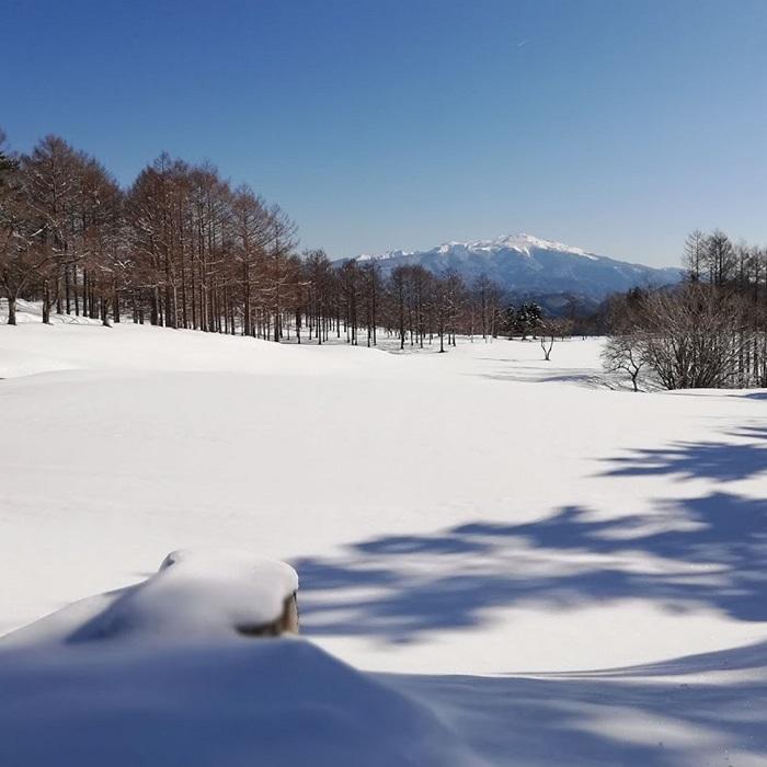 冬季の銀世界も絶景