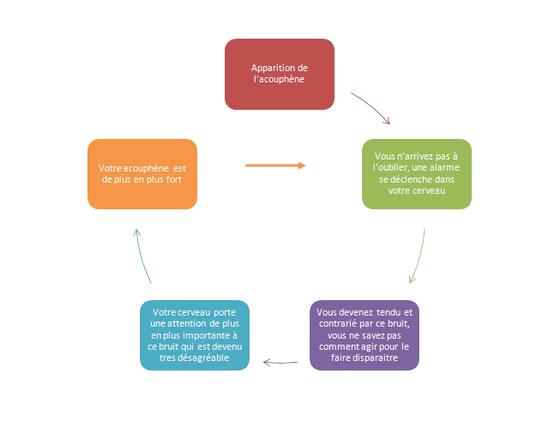 Schéma du mécanisme des acouphènes par Audition 44