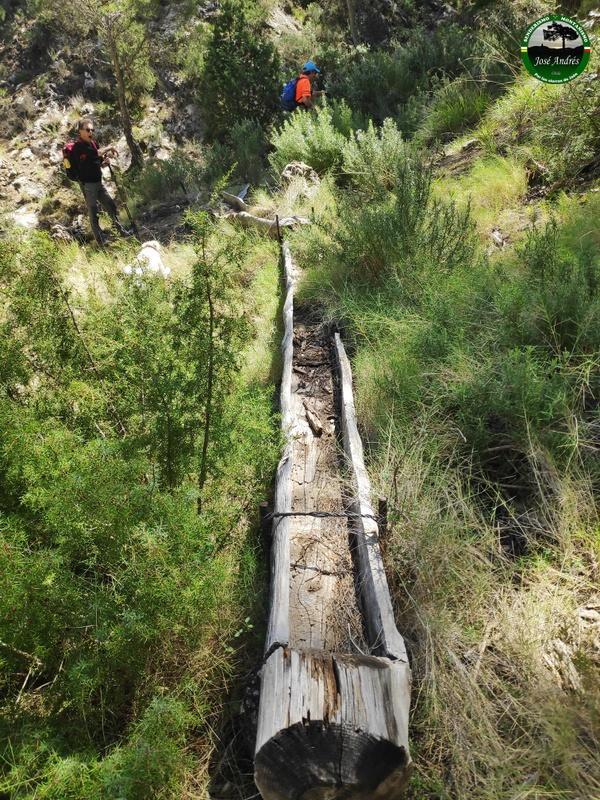 Tornajo seco junto al viejo camino del Madroñal