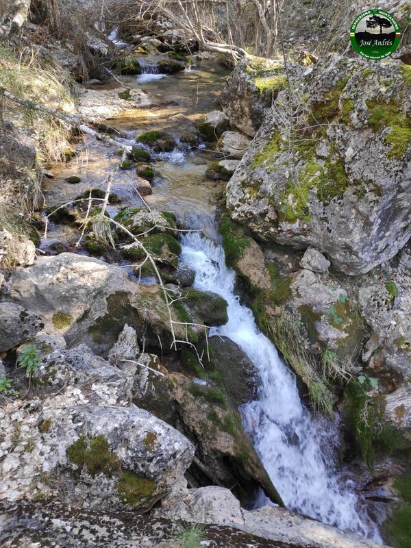 Arroyo de la Fuente del Tejo