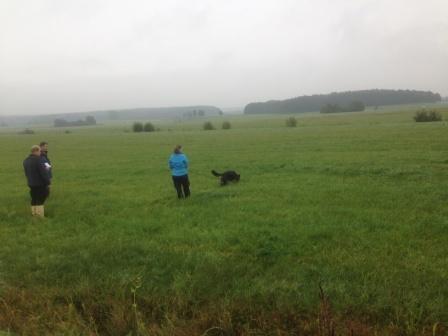 Stefanie mit Delva beim Fährtensuchen