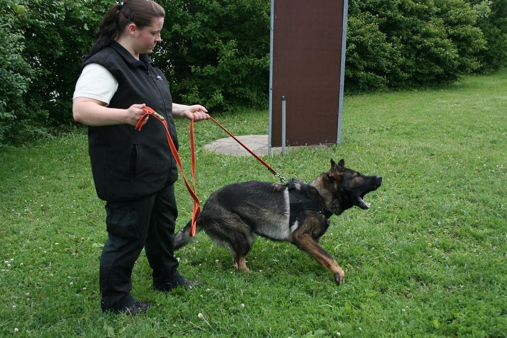 Stefanie Obergfell mit Pflegehund Vee