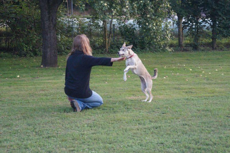 Marion mit Lucy vom Sprung über den Arm