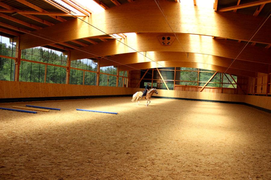 Pferd in Reithalle in Unterlipplgütl