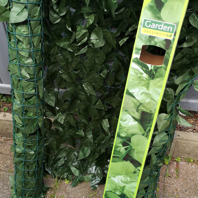 Aldi geplündert, damit unser Regenwald/Dschungel entstehen kann