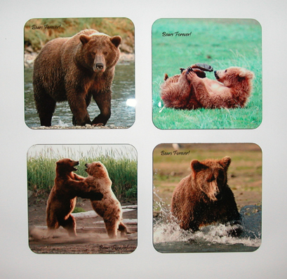 Brown Bear Coasters - Katmai National Park, Alaska