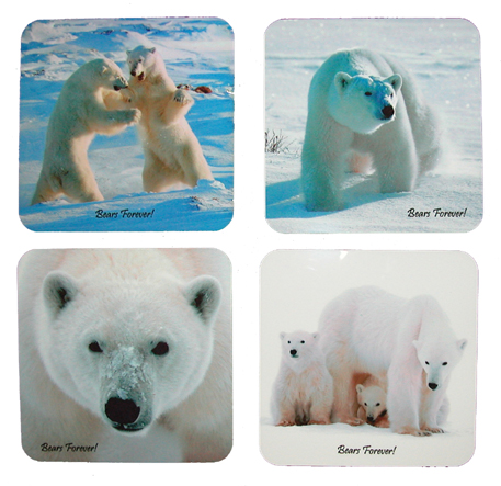 Polar Bear Coasters - Wapusk National Park, Manitoba, Canada