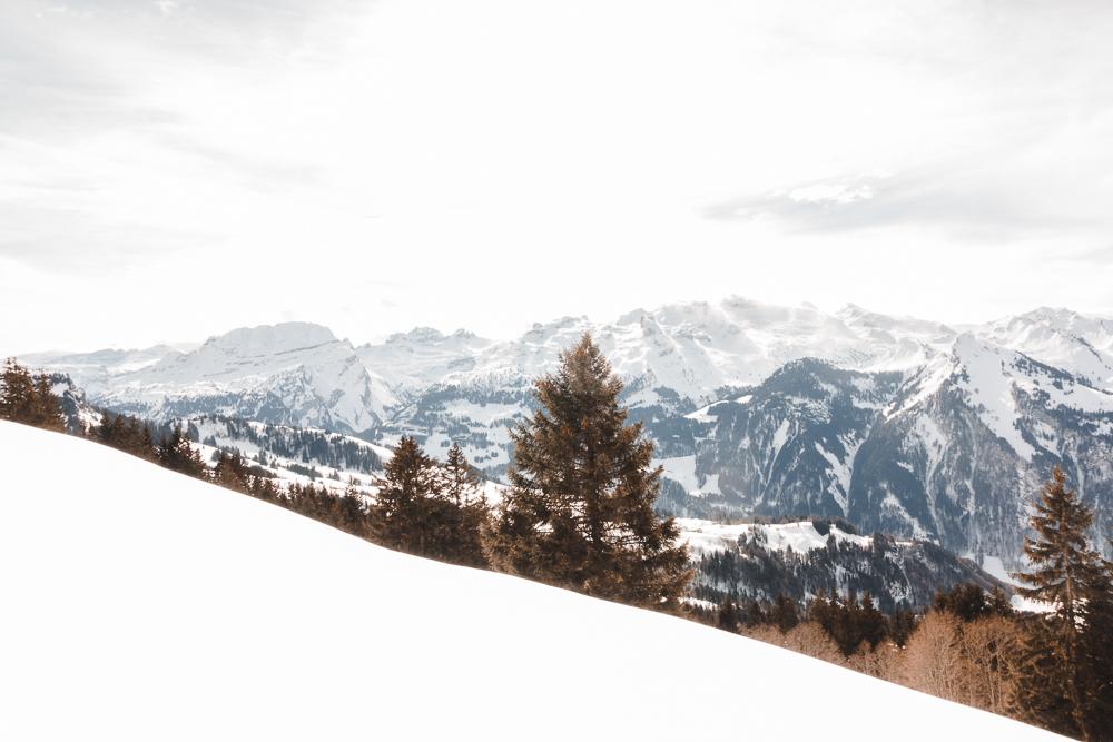 Schnee Winterlandschaft Illgau mit Sicht zum Wasserberg
