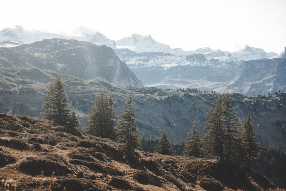 Sicht Muotathaler Bergwelt