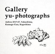 yu-,photographer,yakushima,japan,yu
