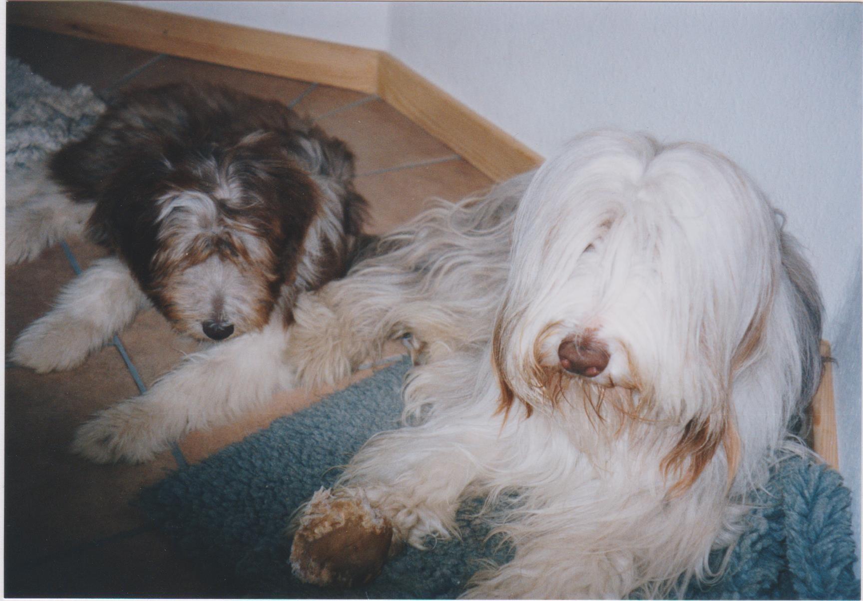 Motte und Michael