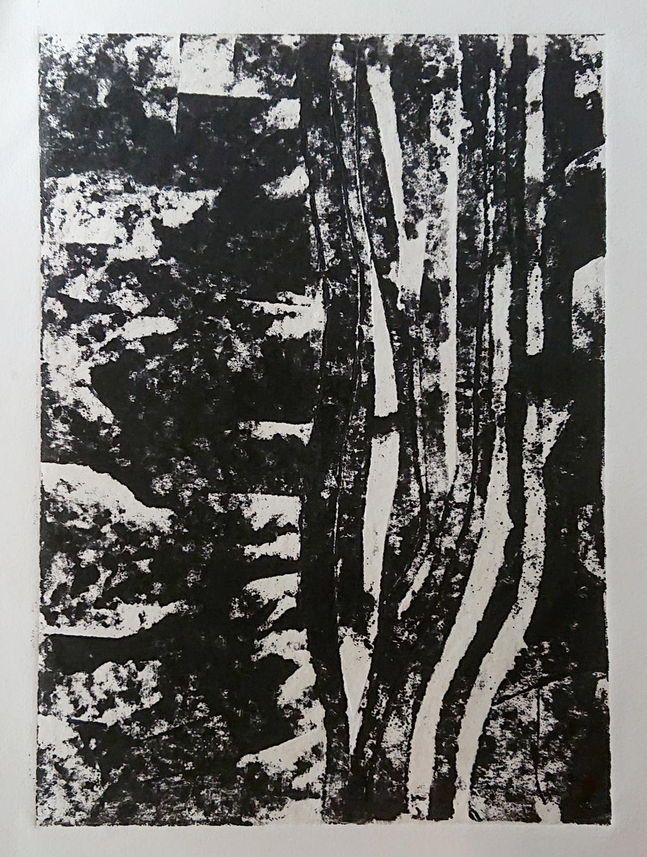 Algues2 - Gravure sur carton 40x30 cm 2018