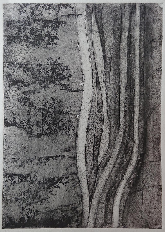 Algues1 - Gravure sur carton 50x40 cm 2018