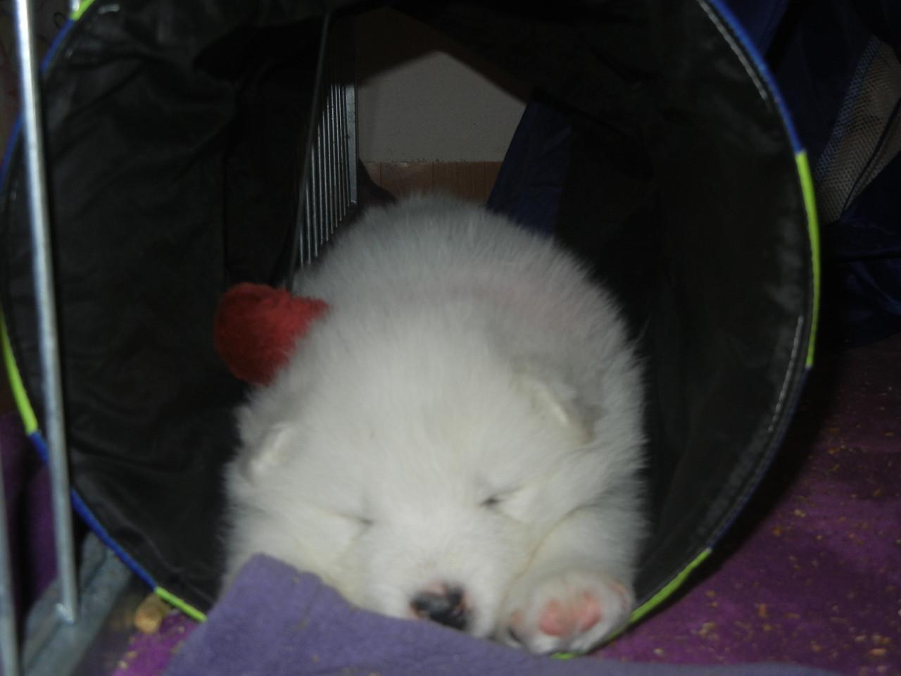 Im Tunnel eingeschlafen