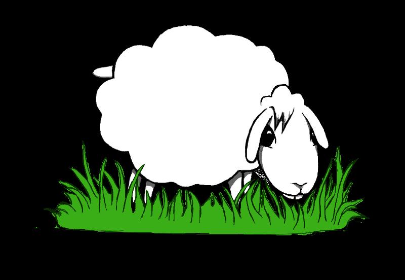 Spielthema Schafebeweidung