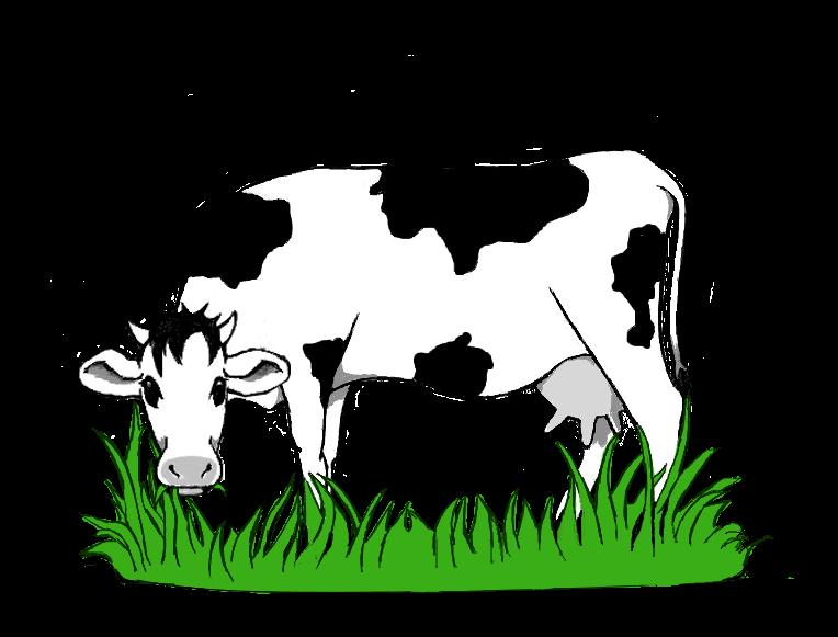 Spielthema Rinderbeweidung