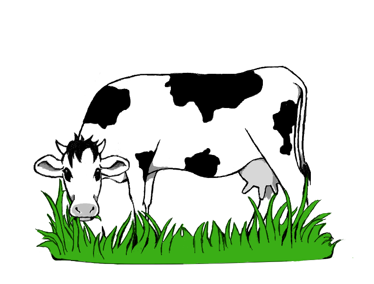 Spielthema Kuhbeweidung