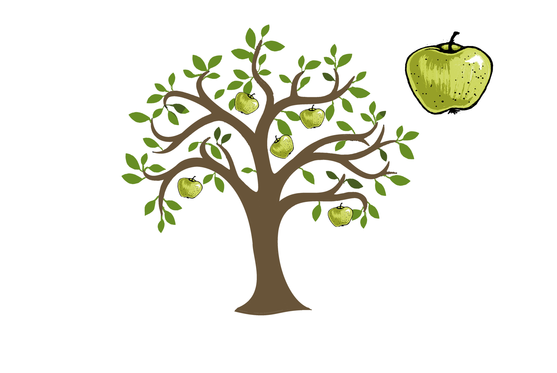 Game topic - traditional orchard - orchard or traditional orchard?