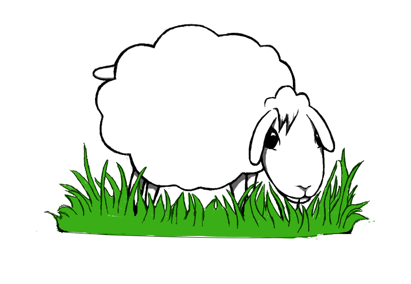Game topic - sheep keeping