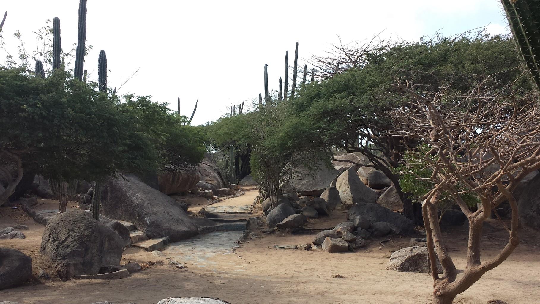 Landschaft bei den Casibari-Felsen