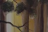 tableau arbre centenaire