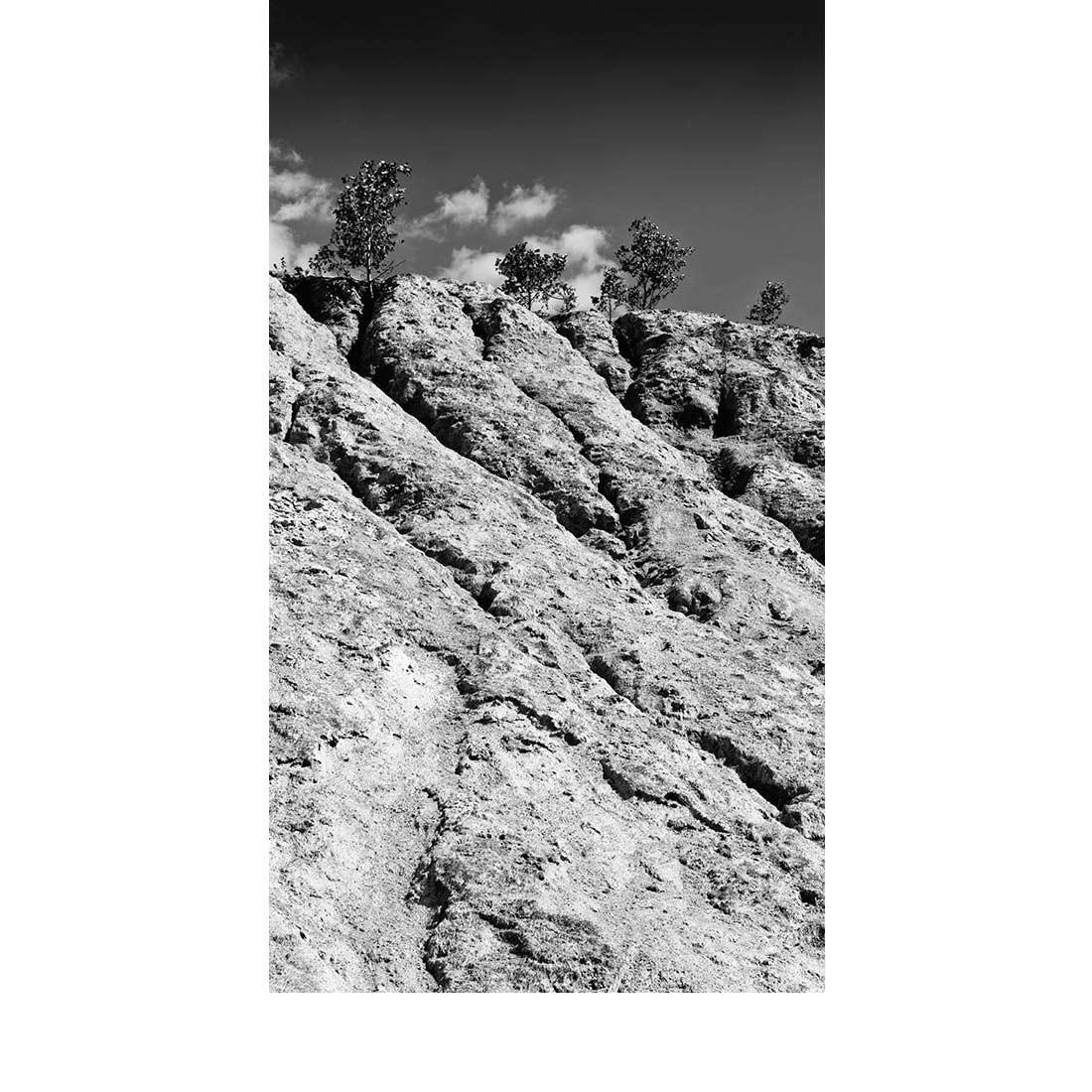 Arbraretz © Photographie : Michel Ducrot