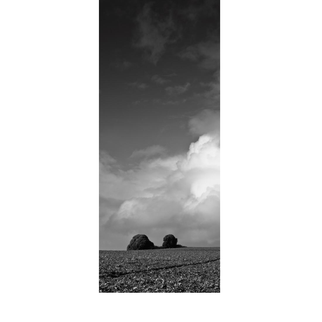 Presqu'ile Guérandaise © Photographie : Michel Ducrot